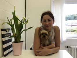 Bei uns im Salon Bild 1, Hundestyling